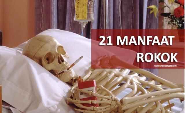 20 Manfaat Merokok